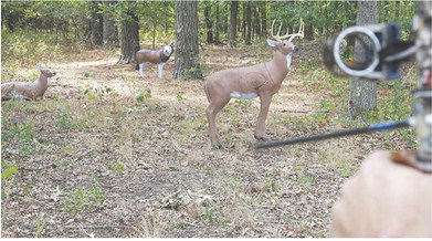 Archery competition prepares hunters for bow season