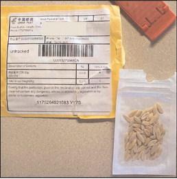 Bad seeds?