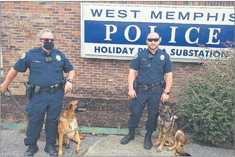 Local police dogs on the job