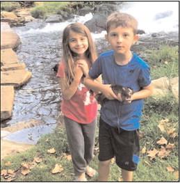 AGFC North Arkansas weekly Fishing Reports
